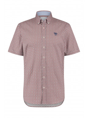 Shirt-with-button-down---wine-red/cobalt
